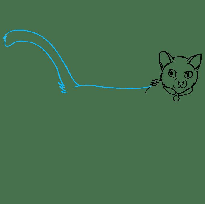 Cách vẽ Firestar từ mèo chiến binh: Bước 6