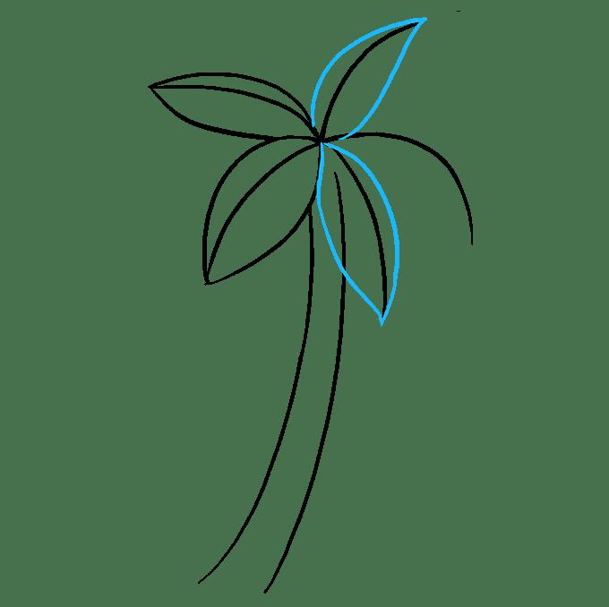 Cách vẽ cây cọ: Bước 4