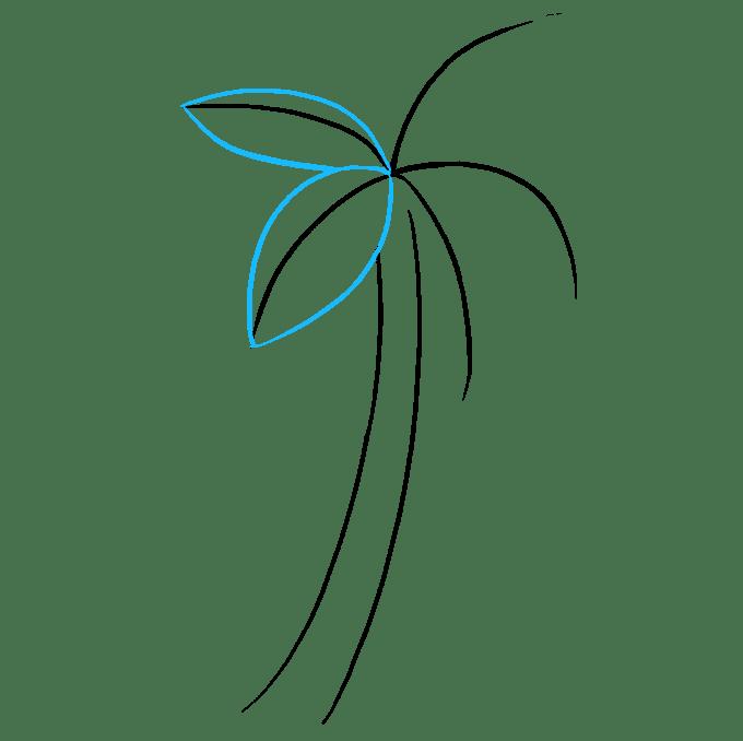 Cách vẽ cây cọ: Bước 3
