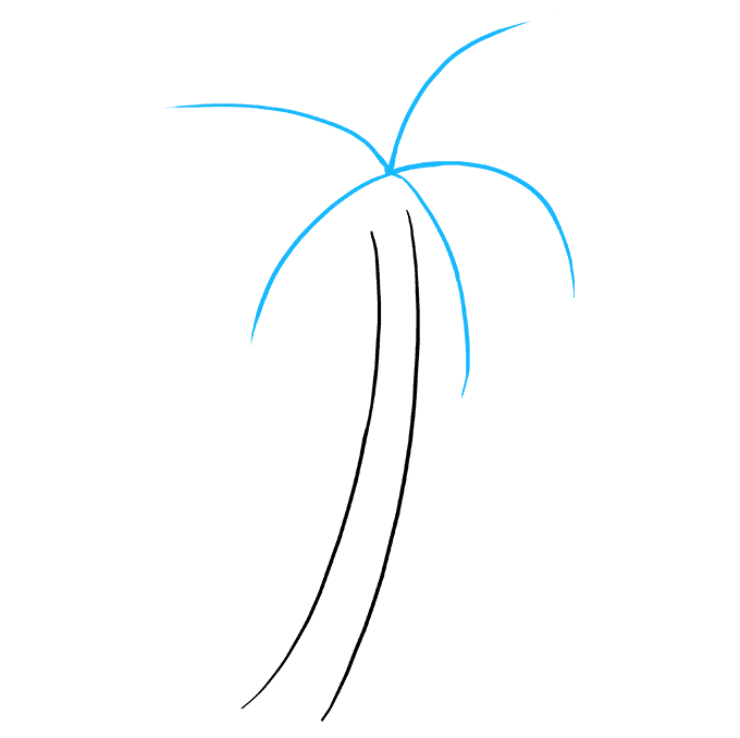 Cách vẽ cây cọ: Bước 2