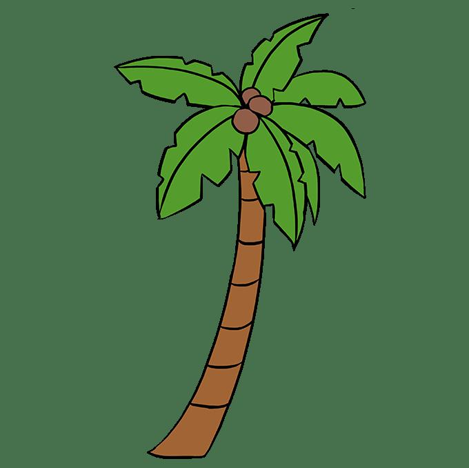 Cách vẽ cây cọ: Bước 10
