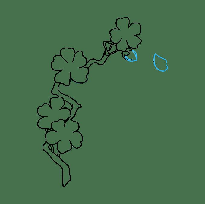 Cách vẽ hoa anh đào: Bước 8