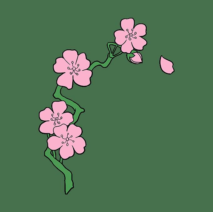 Cách vẽ hoa anh đào: Bước 10