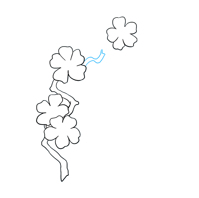Cách vẽ hoa anh đào: Bước 6