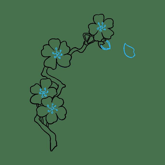 Cách vẽ hoa anh đào: Bước 9