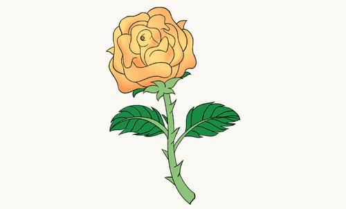 Hướng dẫn vẽ: Cách vẽ hoa hồng bằng thân cây