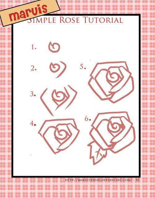 Hướng dẫn vẽ: Cách vẽ hoa hồng tuyến tính