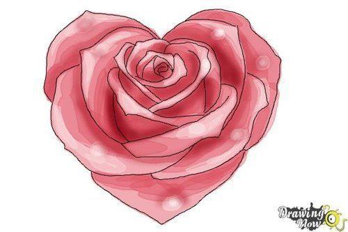 Hướng dẫn vẽ: Cách vẽ hoa hồng hình trái tim