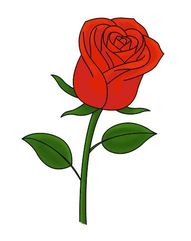 Hướng dẫn vẽ: Cách vẽ một bông hồng duy nhất