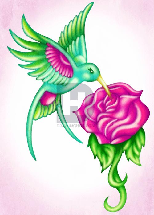 Hướng dẫn vẽ: Cách vẽ chim ruồi bằng hoa hồng