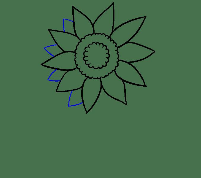 Cách vẽ hoa hướng dương: Bước 5