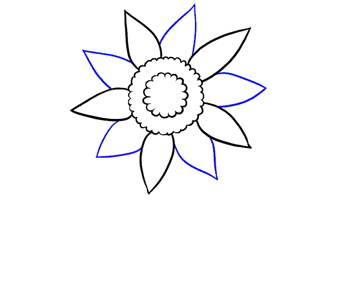Cách vẽ hoa hướng dương: Bước 4