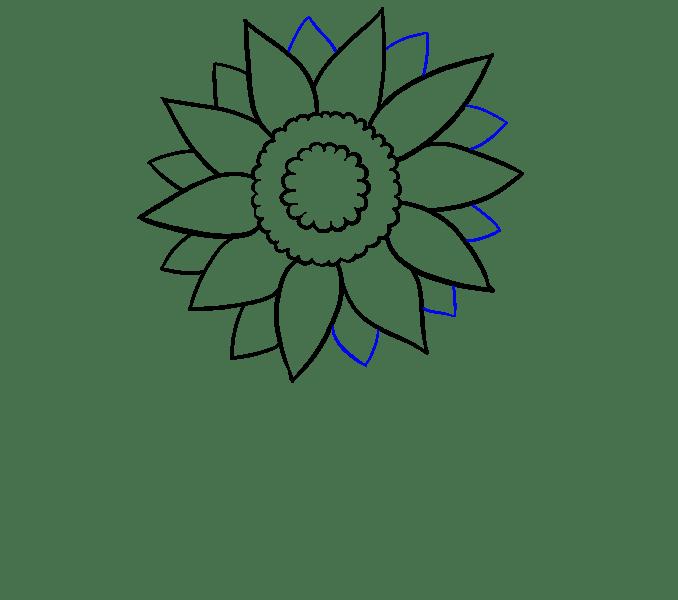 Cách vẽ hoa hướng dương: Bước 6