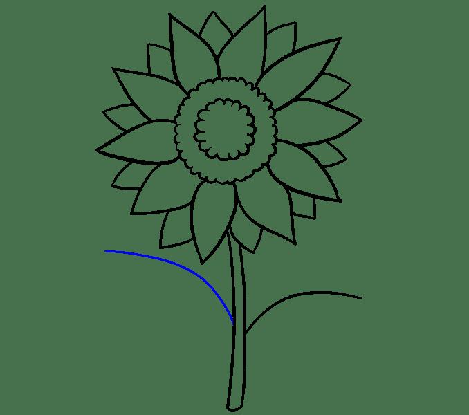 Cách vẽ hoa hướng dương: Bước 9