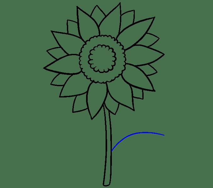 Cách vẽ hoa hướng dương: Bước 8