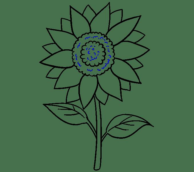 Cách vẽ hoa hướng dương: Bước 17