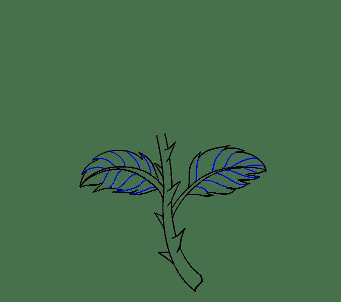 Cách vẽ hoa hồng bằng thân cây: Bước 10