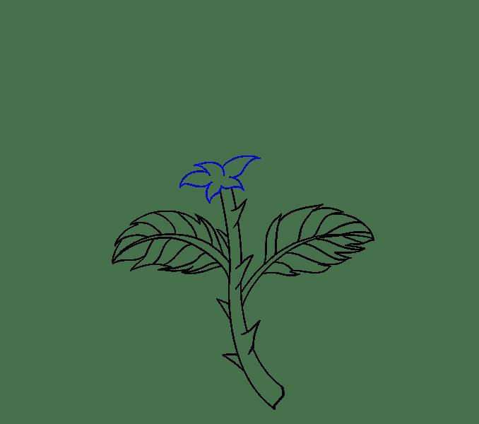 Cách vẽ hoa hồng bằng thân cây: Bước 11