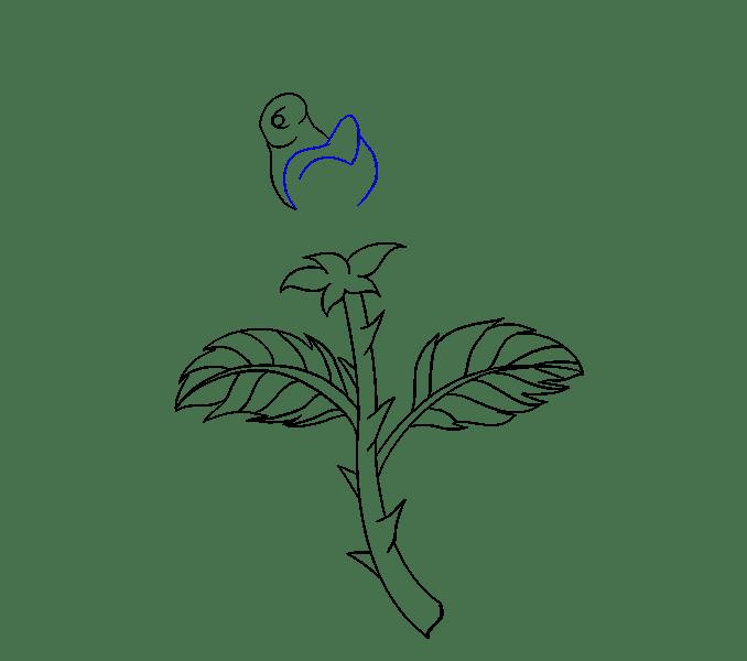 Cách vẽ hoa hồng bằng thân cây: Bước 14