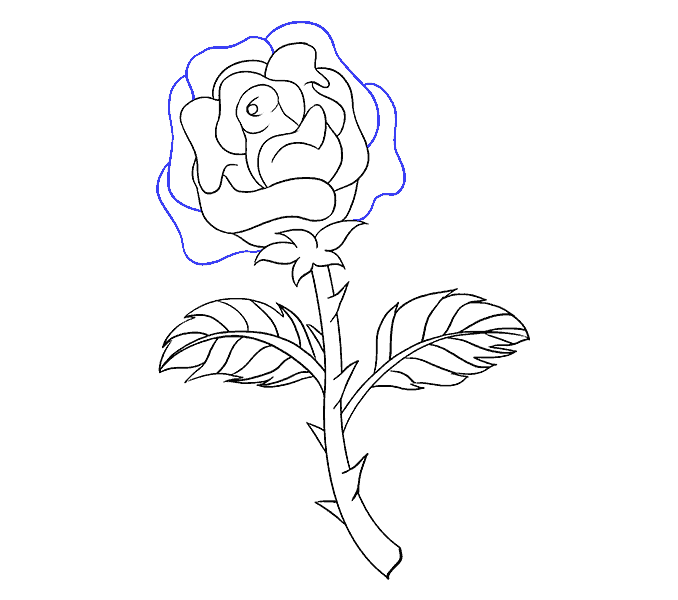 Cách vẽ hoa hồng bằng thân cây: Bước 18