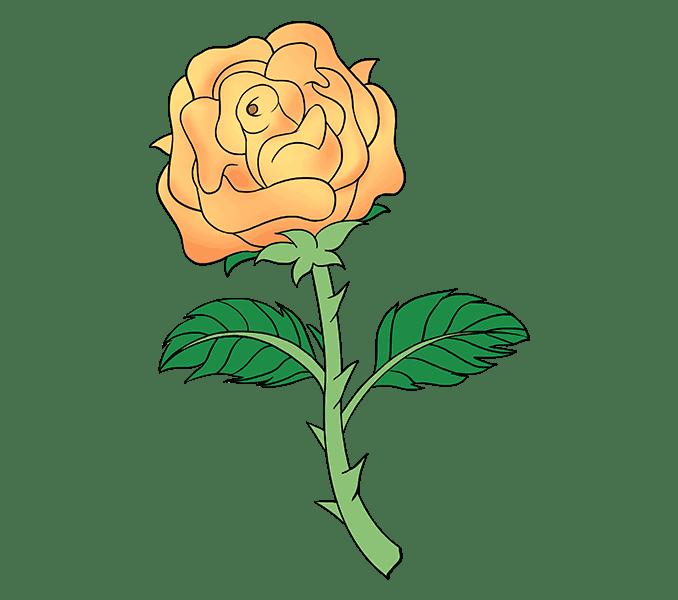 Cách vẽ hoa hồng bằng thân cây: Bước 20