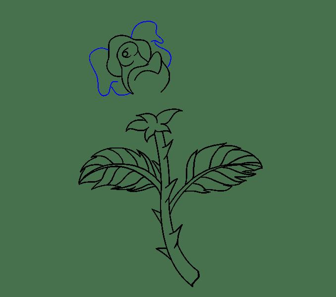 Cách vẽ hoa hồng bằng thân cây: Bước 16