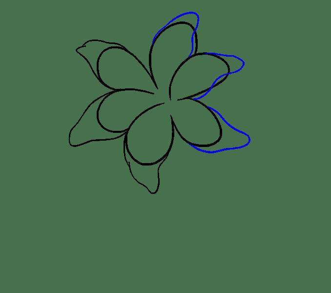 Cách vẽ Lily: Bước 7