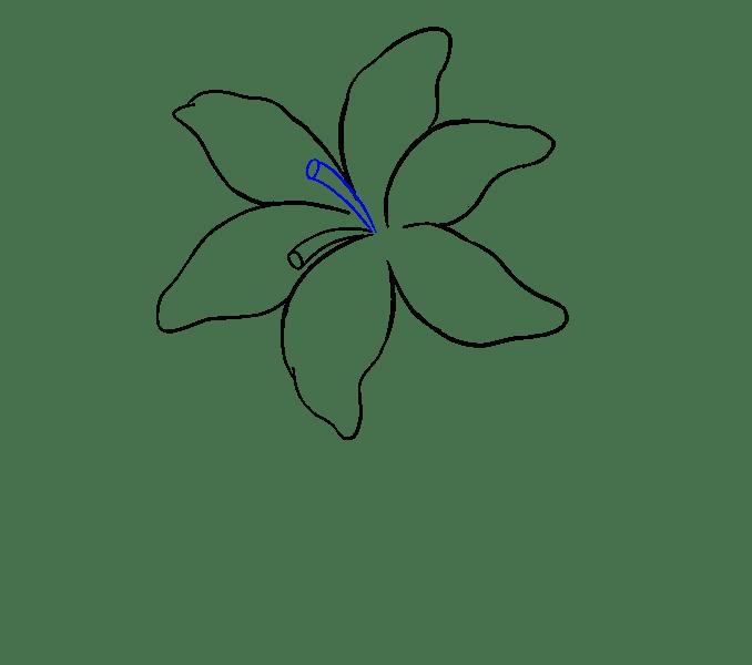 Cách vẽ Lily: Bước 10