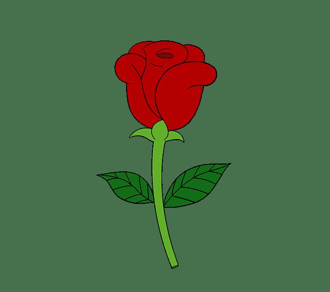 Cách vẽ hoa hồng đơn giản: Bước 20