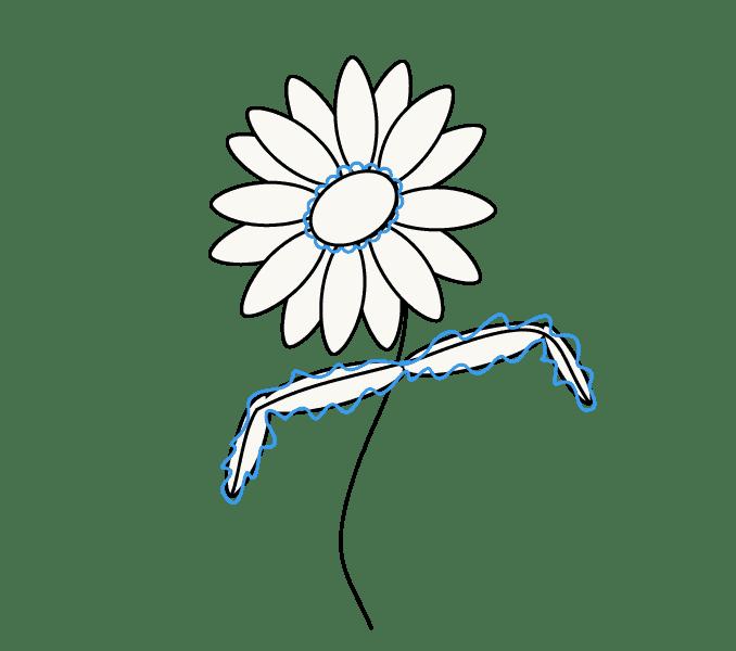 Cách vẽ hoa cúc: Bước 8