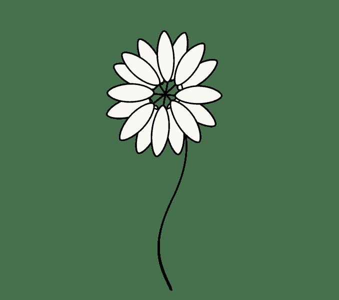 Cách vẽ hoa cúc: Bước 5