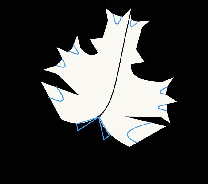 Cách vẽ lá phong: Bước 7