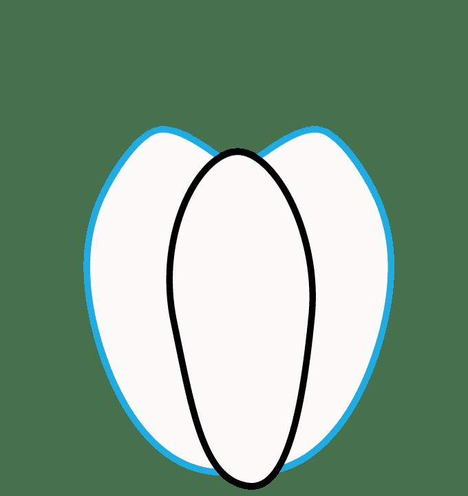 Cách vẽ bí ngô: Bước 2
