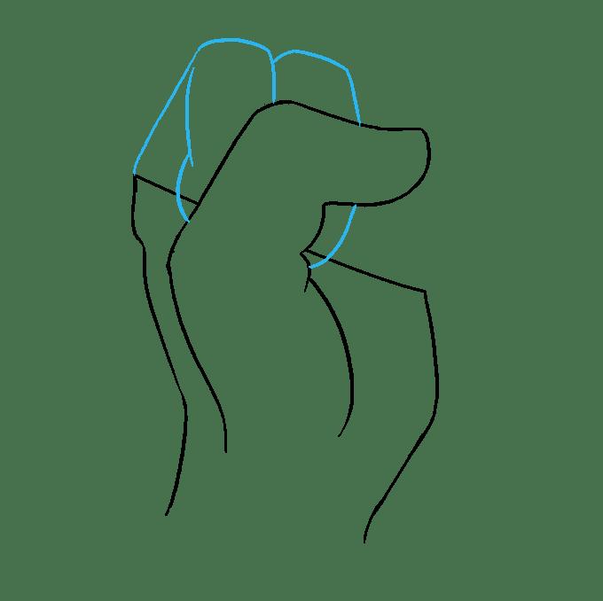 Cách vẽ nắm tay: Bước 5