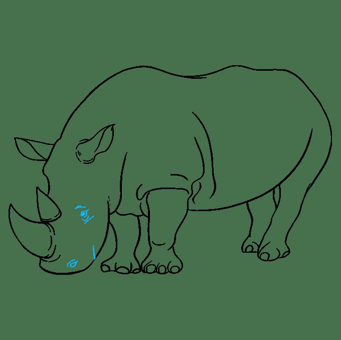 Cách vẽ tê giác: Bước 9