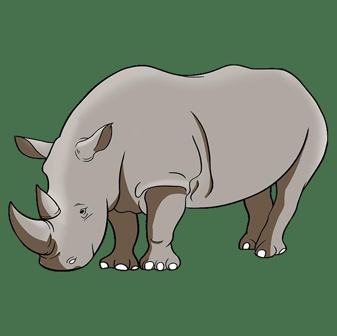 Cách vẽ tê giác: Bước 10
