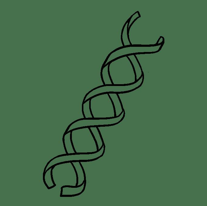 Cách vẽ DNA: Bước 5