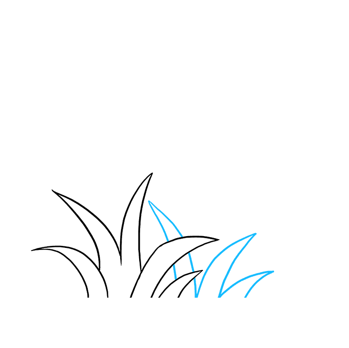 Cách vẽ cỏ: Bước 4