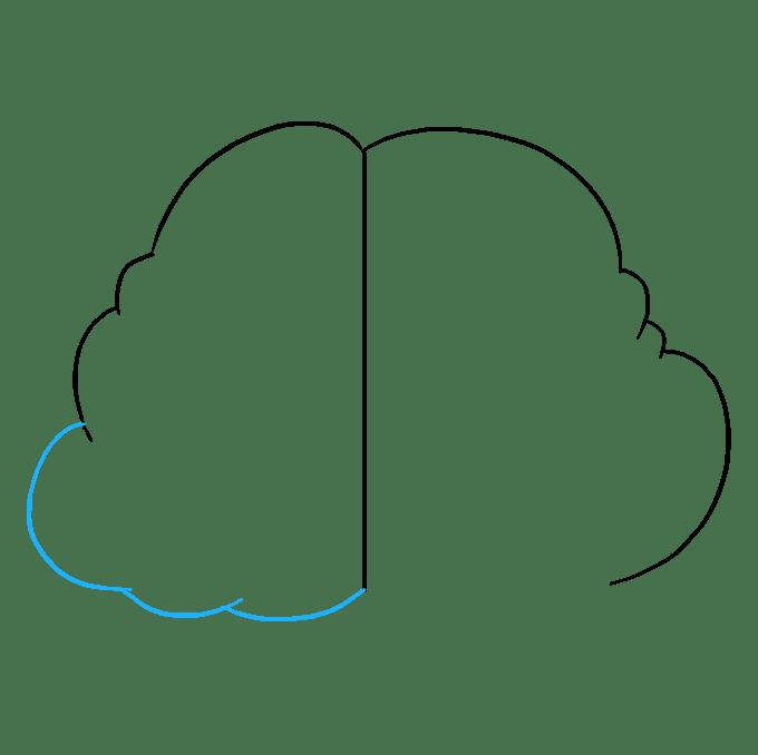Cách vẽ não: Bước 4