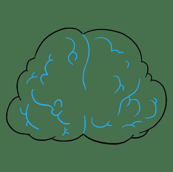 Cách vẽ não: Bước 7
