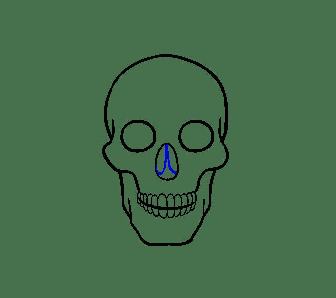 Cách vẽ hộp sọ: Bước 14