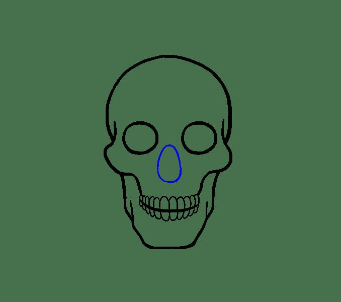 Cách vẽ hộp sọ: Bước 13