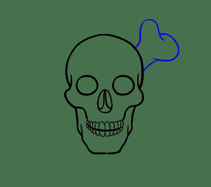 Cách vẽ hộp sọ: Bước 15