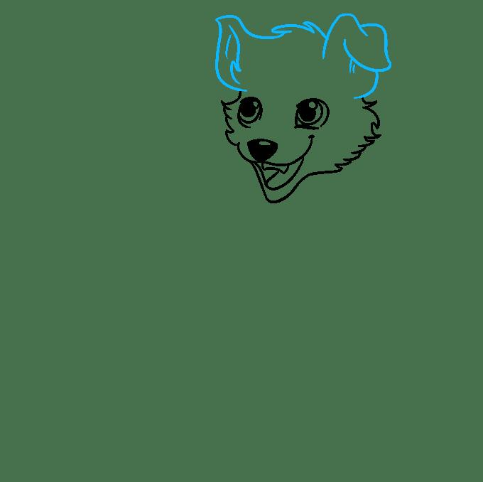 Cách vẽ chó Anime: Bước 5