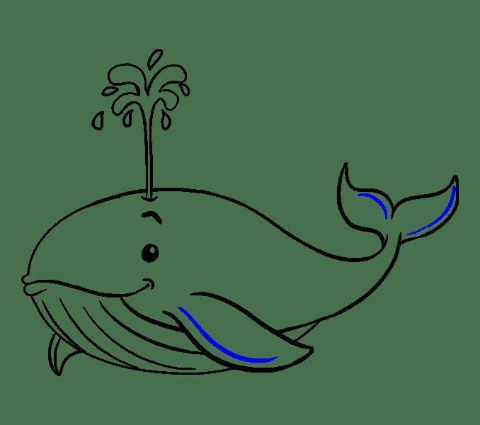 Cách vẽ cá voi: Bước 19