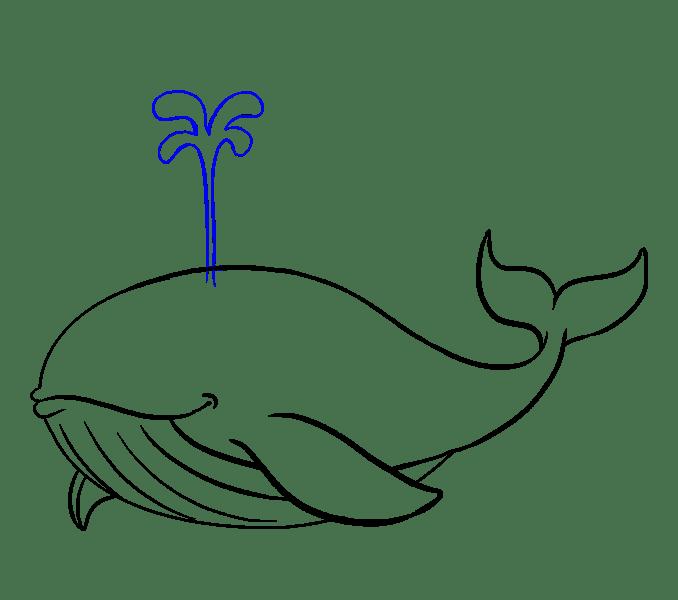 Cách vẽ cá voi: Bước 16