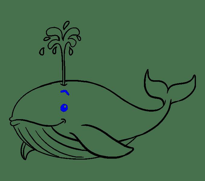 Cách vẽ cá voi: Bước 18