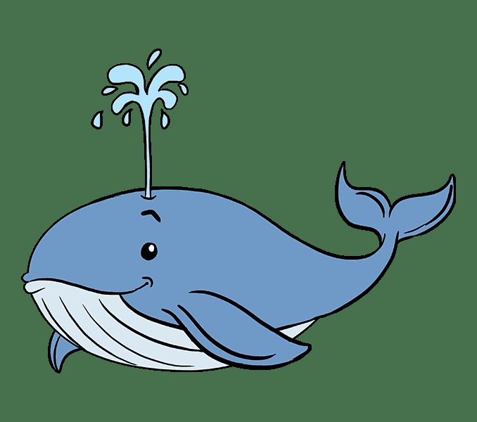 Cách vẽ cá voi: Bước 20