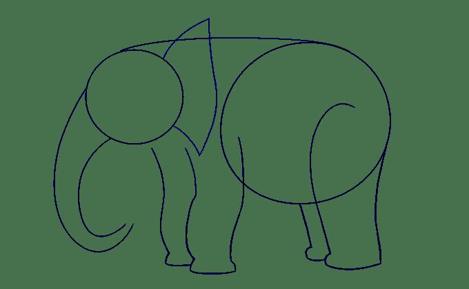 Cách vẽ voi: Bước 7