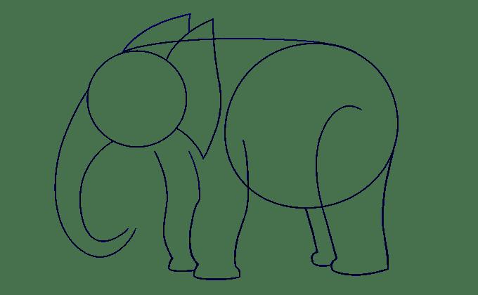 Cách vẽ voi: Bước 8